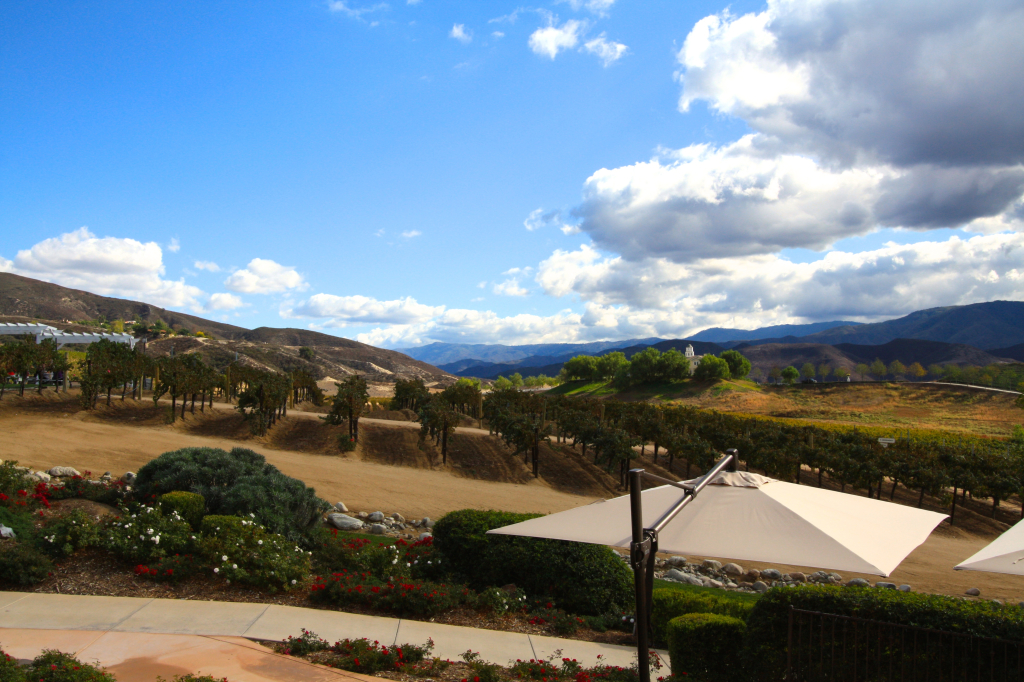 Temecula Valley Leoness Winery